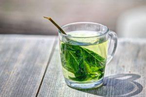 zielona herbata do parzenia